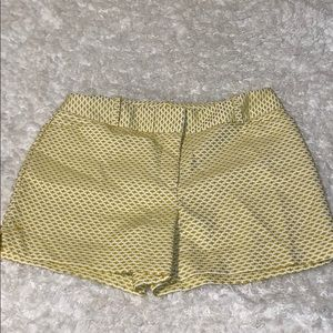 Women's CATO Dress Shorts Size 12